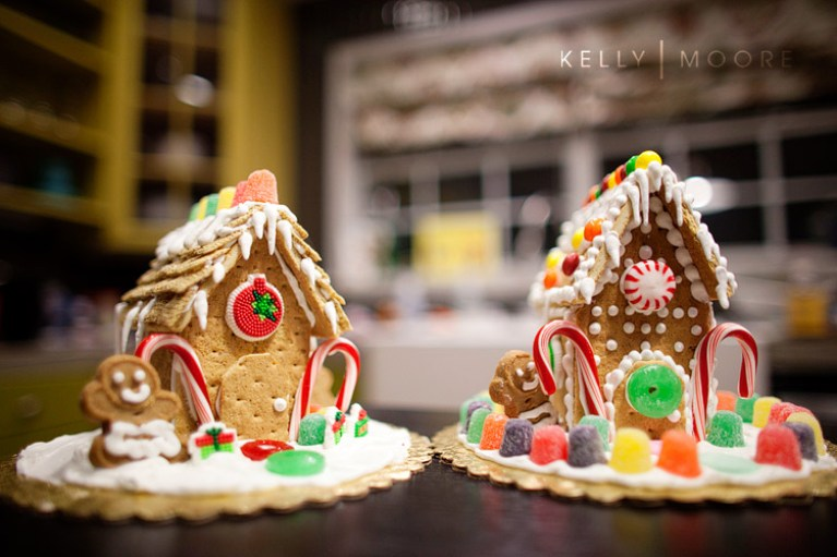 judy moore's mini ginger bread house