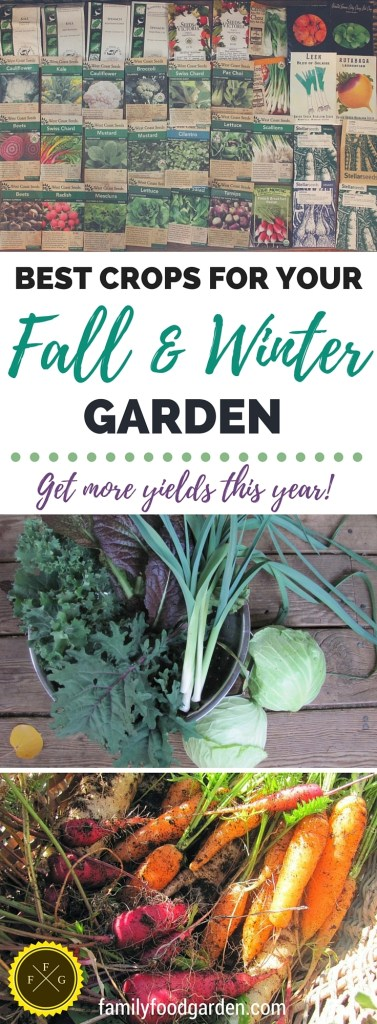 Best crops for Fall and Winter garden