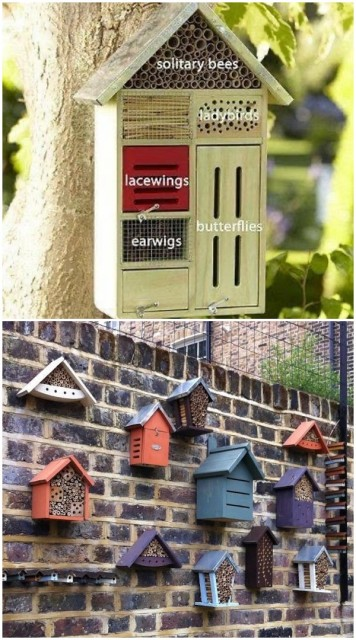 turn-bird-houses-into-bug-hotels-insect-homes