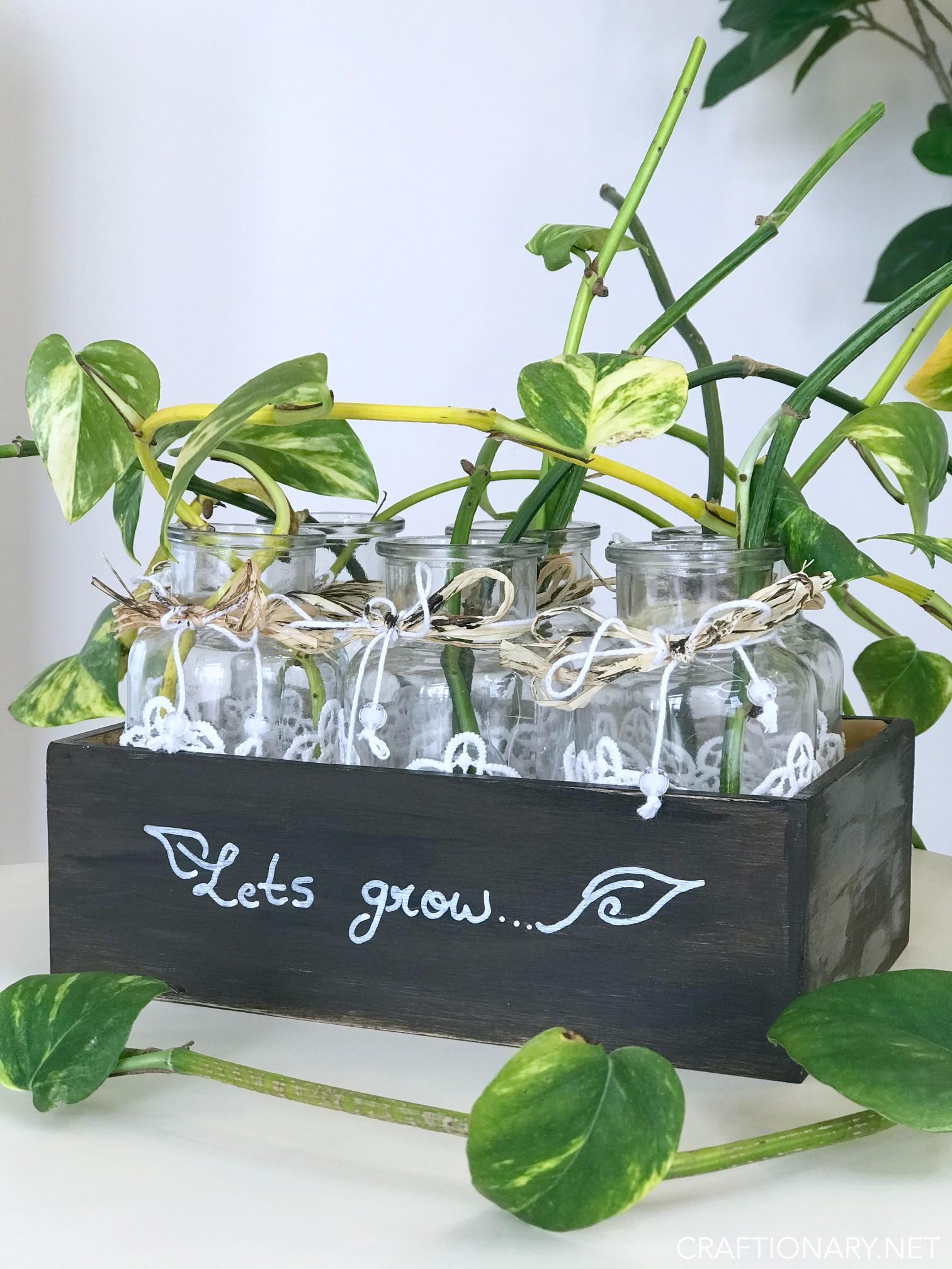 diy-plant-propagation-station-simple-idea