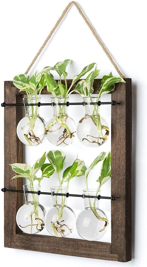 hanging-glass-planter-propagate-station