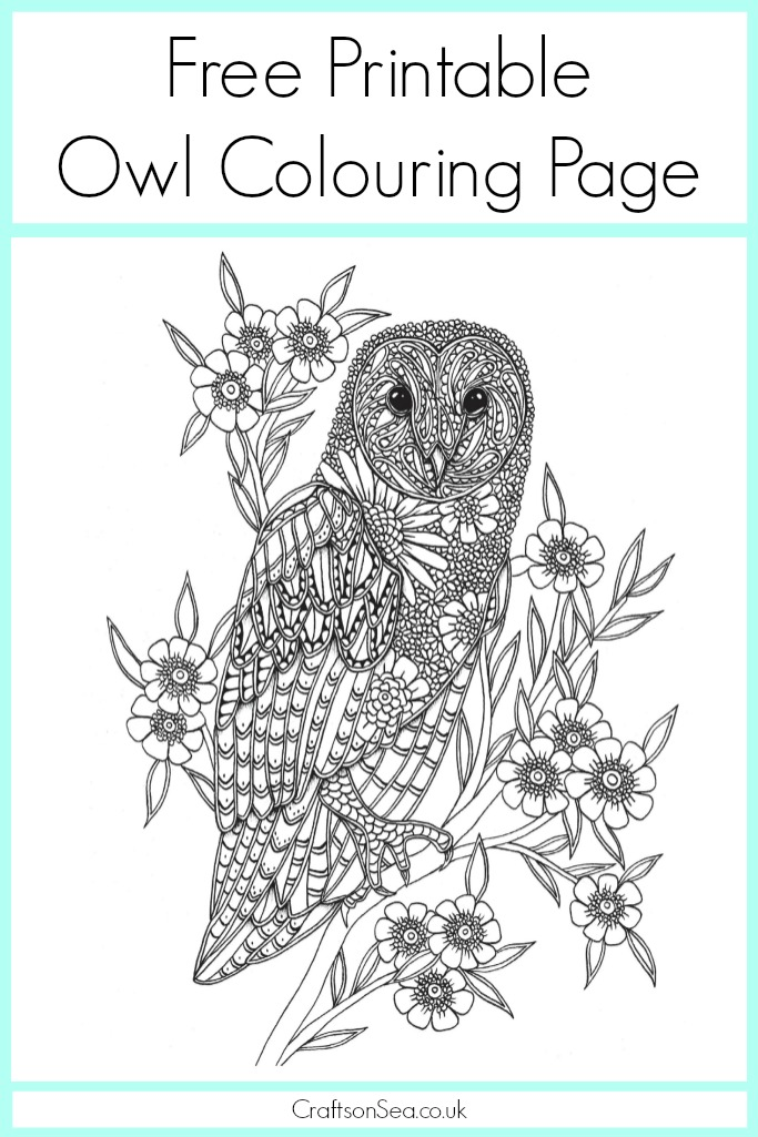 Free Owl Colouring Page Crafts On Sea