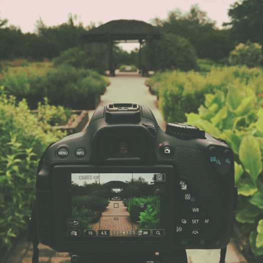 dslr camera on tripod in garden How to be a more organised blogger