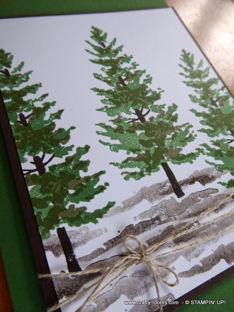 Great masculine card using pine tree images