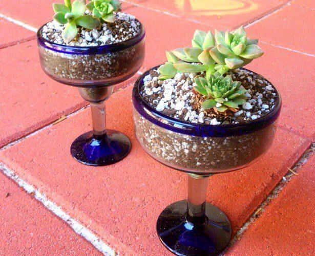 Cactus gardens made from Margarita glasses, CraftyChica.com