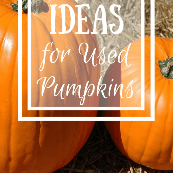 Ideas for Used Pumpkins