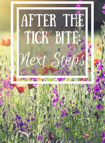After the Tick Bite: What are your next steps?