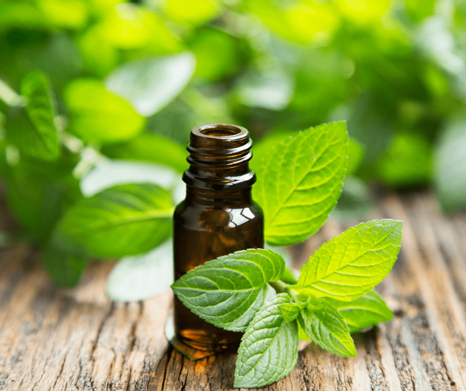 7 Peppermint Essential Oil Uses That Are Awesome For Summer