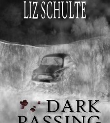 Five questions with Liz Schulte #booktour #interview