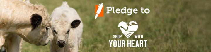 Shop With Your Heart - At the ASPCA Shop With Your Heart website you'll find an abundance of options for healthy and humane food choices, along with tips on how to begin to implement them in your own family.