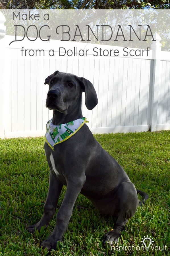 Dog Bandana made using items from the Dollar Tree. Use this simpleDIY to make cute wearables for your furry friend.