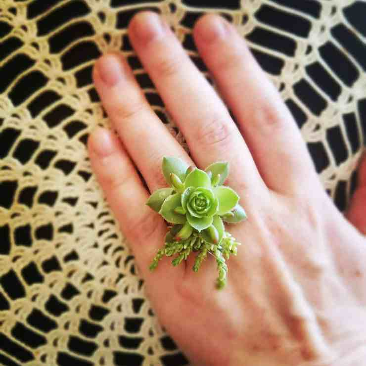 succulent ring tutorial