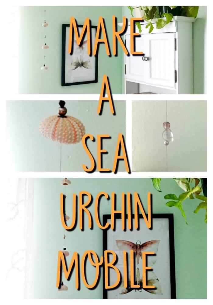 sea urchin mobile n2