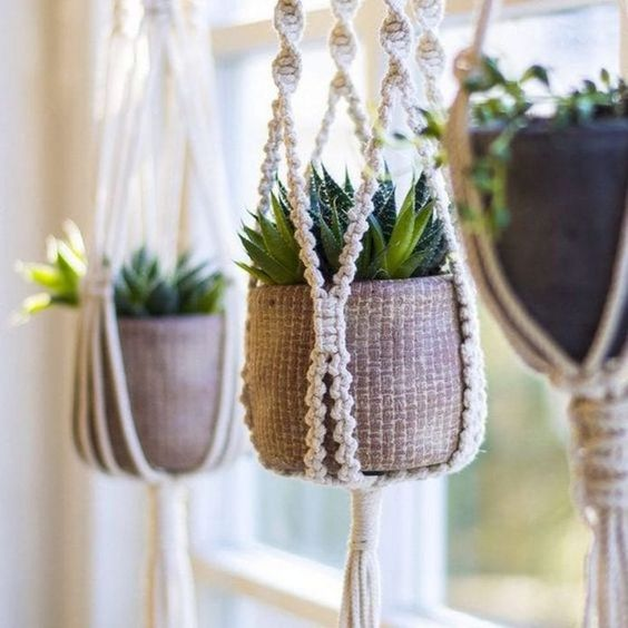Three macrame plant hangers, photo