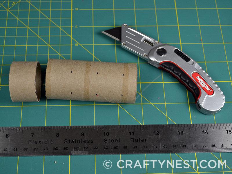 Cut toilet paper roll, photo
