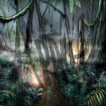Environment11