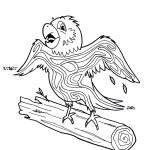 09 - Parrot