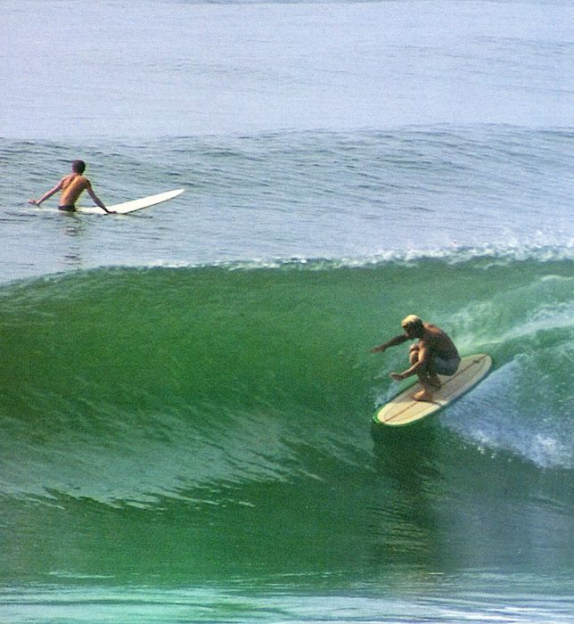 Surf_0082