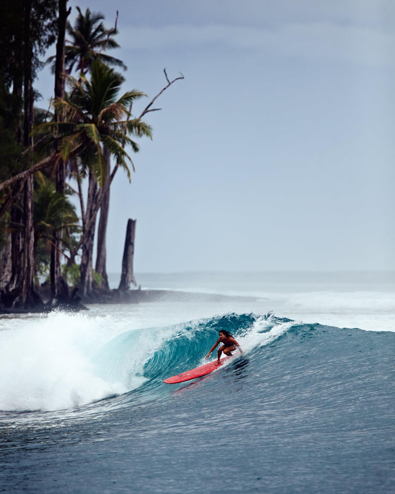 Surf_0098