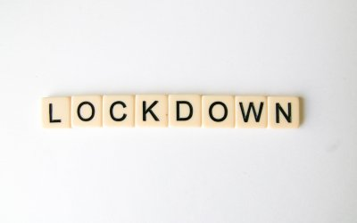 Lockdown II or Freedom? 7 Lockdown Facts Every American Should Know