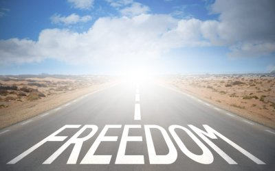 Strategic Delusion: The Slow Path to Destroying Your Freedom