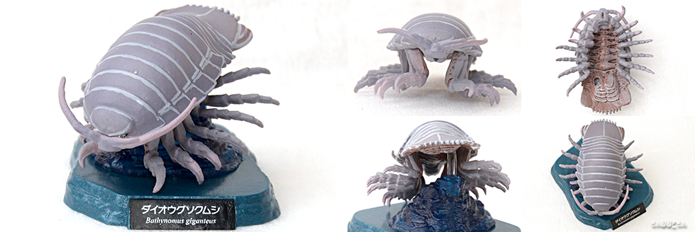 鶴齋藏書-活水有魚-擬真動物扭蛋食玩-深海魚與深海生物館