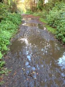 Access footpath via Downslink Cranleigh The Chantries