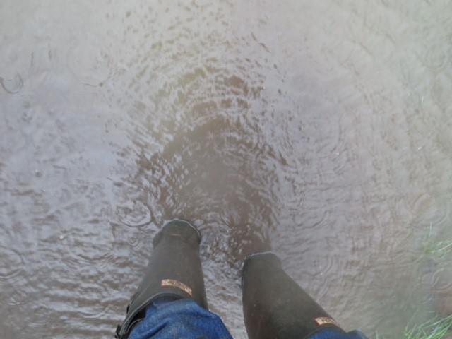 Nightingales Flooding – A Resident's View