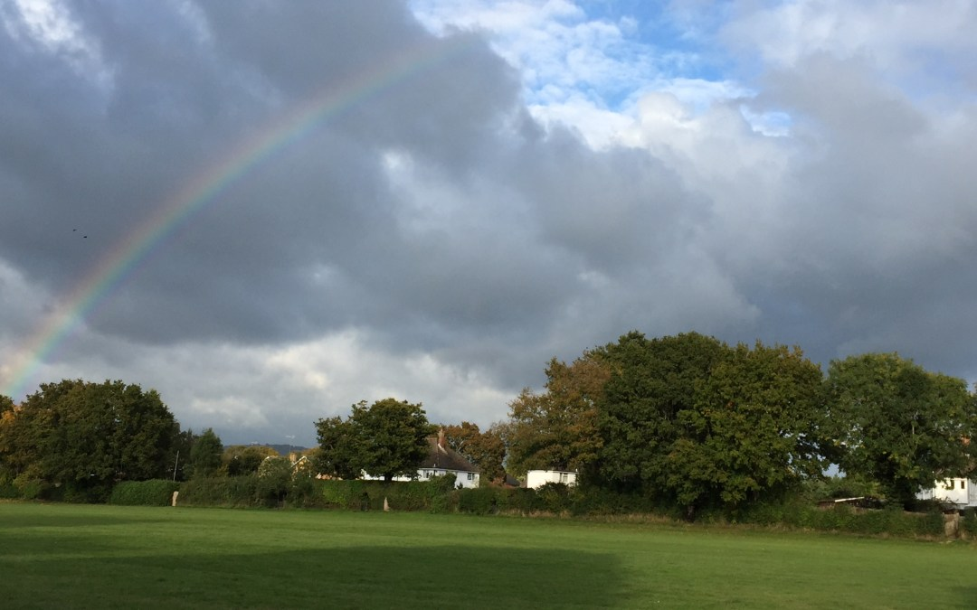 Knowle Park Initiative Rejected