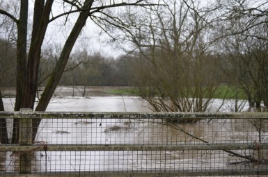 Elmbridge Road Flooding 15 January 2015
