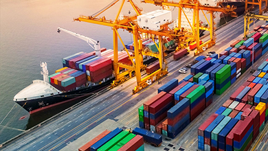 Download the White Paper: What You Need to Know About International Shipping