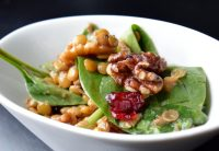 Cranberry Walnut Lentil Salad-002