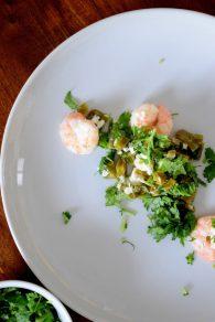 Shrimp Nopales-017