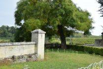 2015 10 11 Bordeaux Stephane (Ashley)-172