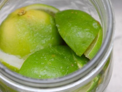 Preserved Limes-004
