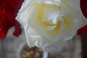 Ginger Rose Toasted Nuts-011