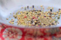 Dukkah Spice-004