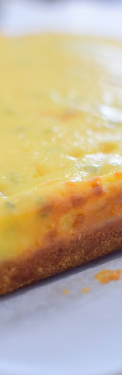 Sweet and Savory Havarti Cheesecake Bars-019