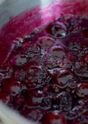 Chocolate Cherry Berry Tiara Cake-010