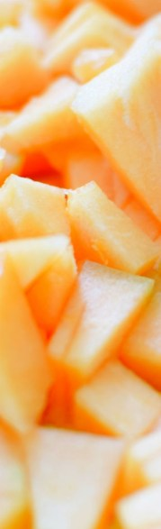 Salted Honey Cantaloupe Jam