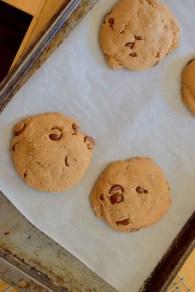 kentucky-bourbon-chocolate-chip-cookies-016
