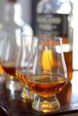 Whiskey & Scotch Tasting-011
