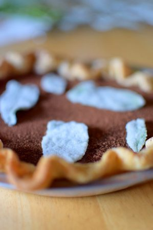 Chocolate Mint Julep Pie-021