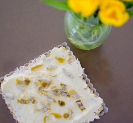 Coconut Lime Ginger Macadamia Bars-005