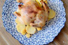 Lemon Parsnip Cornish Hens-008
