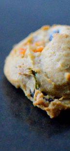 Persimmon Tarragon Cranberry Pecan Cookies-009