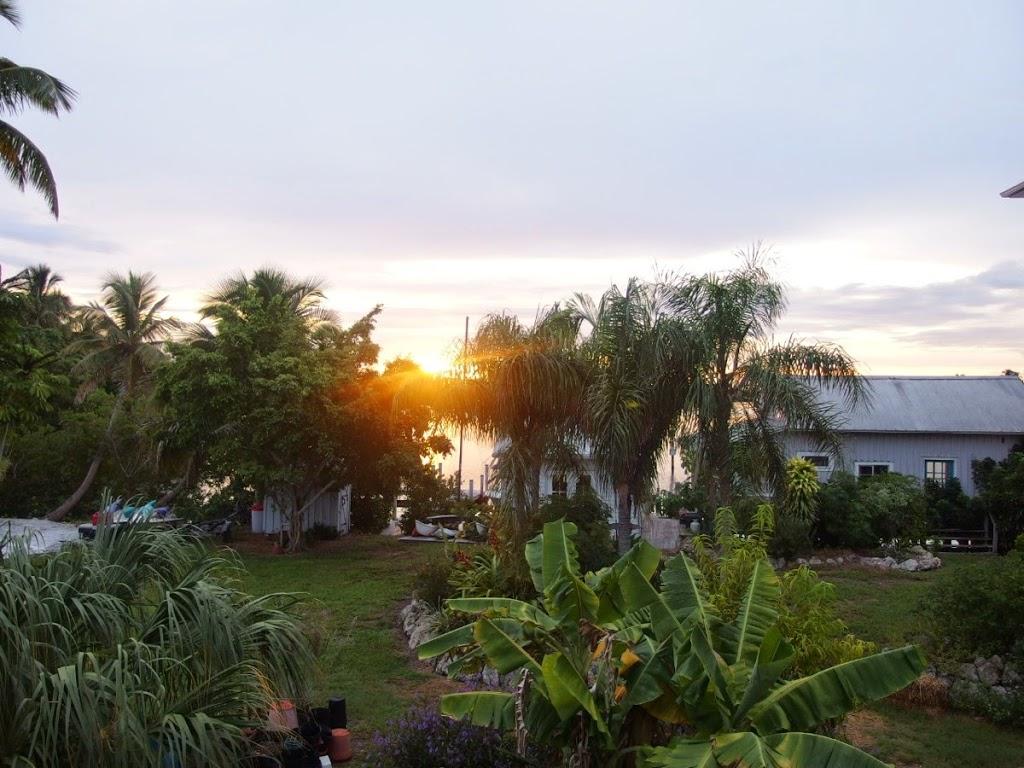 Pine Island Sunrise