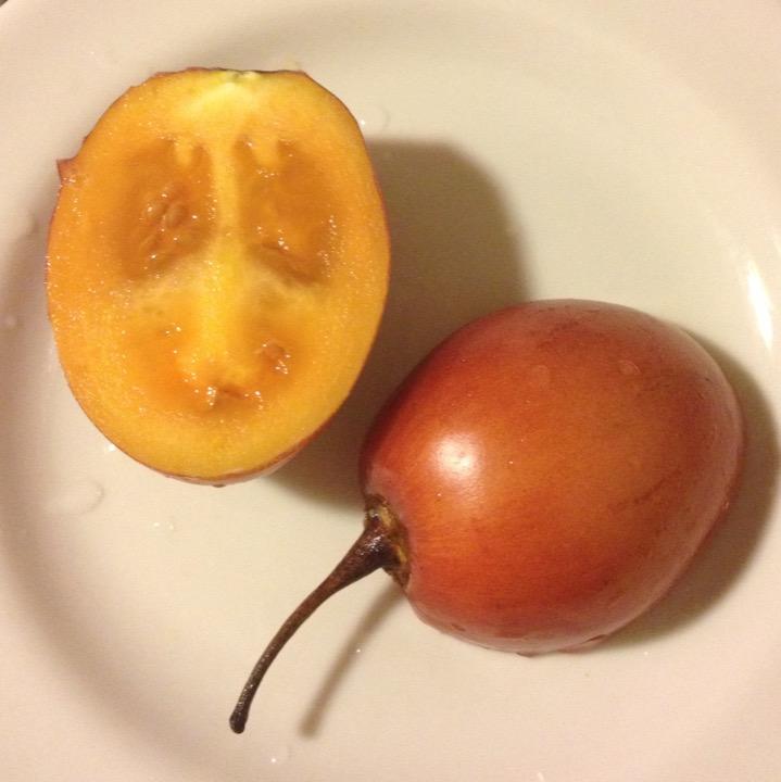 Tomate Arbol
