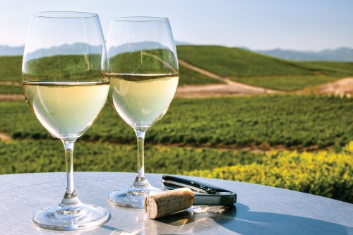 San Francisco Winery Tours
