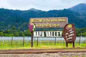 Napa Visitors Guide